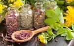 Лечение травами от молочницы для женщин