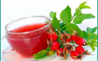 Как заваривать плоды шиповника при цистите