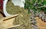 Как принимать масло черного тмина при цистите